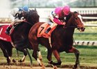 Mariah's Storm takes the 1995 Falls City at Churchill Downs
