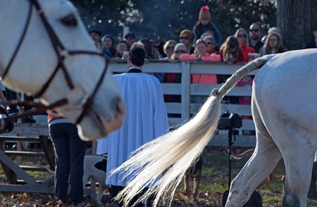 Annual blessing and foxhunt at Shaker Village near Harrodsburg, Ky., with Long Run - Woodford Hounds foxhunts on Nov. 25, 2017, including Off the track Thoroughbreds.