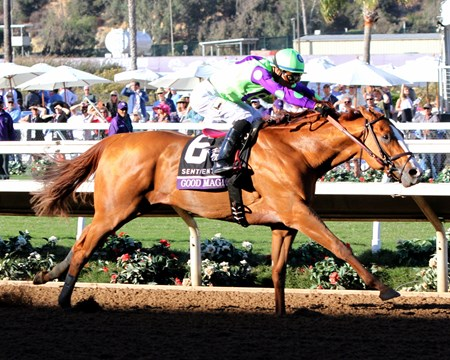 Good Magic with Jose Ortiz win the Breeders' Cup Juvenile at Del Mar on November 4, 2017