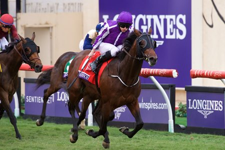 Mendelssohn soars to the finish in the Breeders' Cup Juvenile Turf Nov. 3 at Del Mar