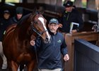 Twirl was a $3.1 million RNA at the Keeneland November sale