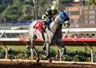 Greyvitos wins the Bob Hope Stakes at Del Mar