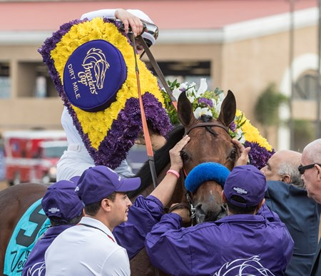 Battle of Midway wins the Breeders Cup Dirt Mile on November 3, 2017