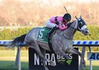 Actress takes the Comely by 8 1/4 lengths at Aqueduct Racetrack