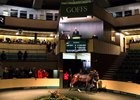 Lot 541, a full sister to group 1 winner Johannes Vermeer, in the ring at the Goffs November breeding stock sale
