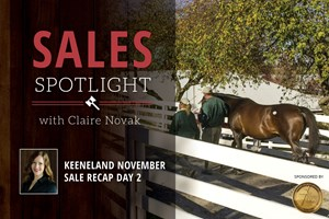 2017 Keeneland November Sale Day 2 Recap