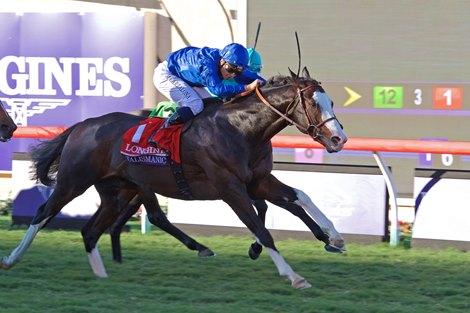 Talismanic Surprises In Breeders Cup Turf Bloodhorse