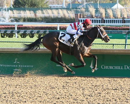 America's Tale - Maiden Win, Churchill Downs - November 19, 2017