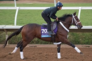 Firenze Fire gallops at Del Mar ahead of the Breeders' Cup