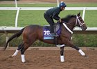 Firenze Fire training ahead of the Breeders' Cup Juvenile at Del Mar