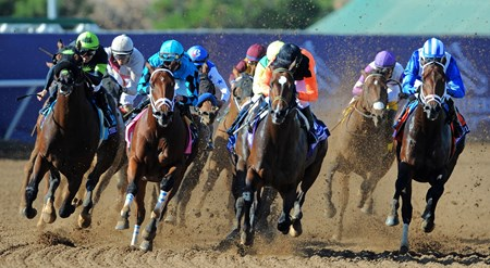 Roy H, second from left, Kent Desormeaux up, wins the Breeders' Cup Sprint