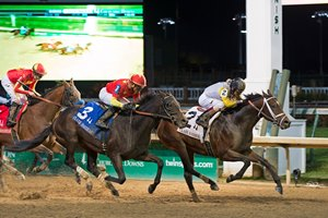 Seeking the Soul with John Velazquez wins the G1 Clark Handicap at Churchill Nov. 24, 2017 Churchill Downs in Louisville, KY.