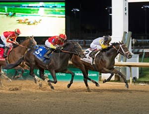 Seeking the Soul wins the Clark Handicap score at Churchill Downs