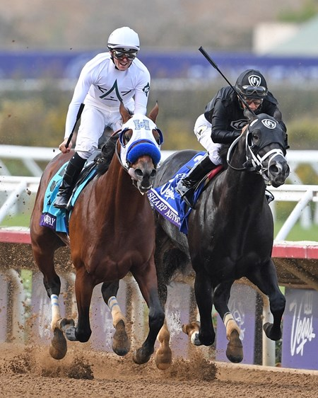 Battle of Midway, Flavien Pratt up, holds off Sharp Azteca to win the Gr.1 Breeders' Cup Dirt Mile at Del Mar.