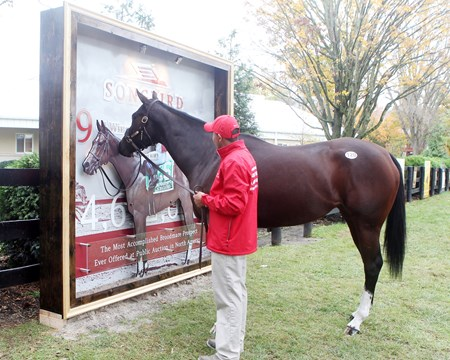 Hip 120, Songbird, Scenics, 2017 Fasig-Tipton November Sale