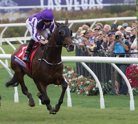 Mendelssohn wins the Breeders' Cup Juvenile Turf at Del Mar