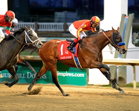 Hoppertunity wins the 2014 Clark Handicap.