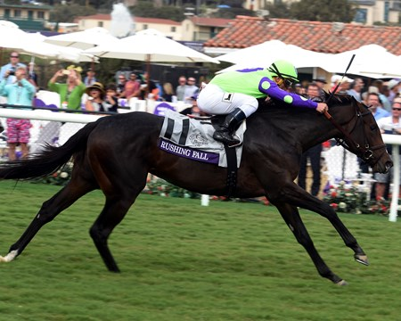 Rushing Fall wins the Breeders Cup Juvenile Fillies Turf at Del Mar on November 3, 2017.