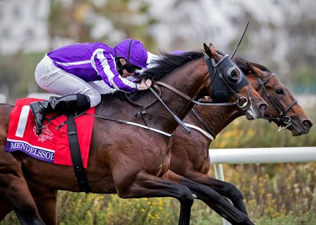 Mendelssohn wins The Breeders Cup Juvenille Turf at Del Mar on November 3rd, jockey Ryan Moore up