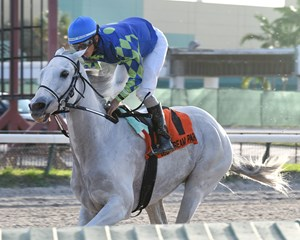 Mr. Jordan wins the Millions Classic Preview Stakes at Gulfstream Park West by 11 1/2 lengths