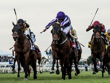 Untamed Domain (outside) runs second by a length to Mendelssohn in the Breeders' Cup Juvenile Turf