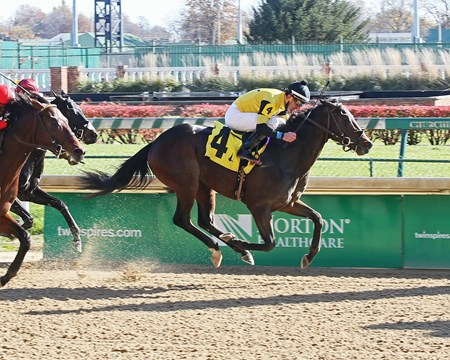 Seven Trumpets - AOC, Churchill Downs, November 25, 2017