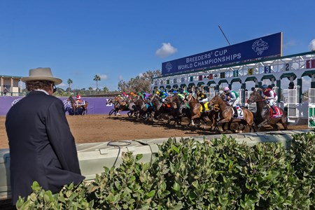 Bar of Gold wins the Breeders Cup Filly & Mare Sprint at Del Mar on November 3rd 2017, jockey Irad Ortiz Jr up