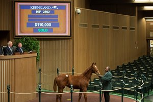 Hip 2892, a filly by Broken Vow, hammers on a final bid of $110,000