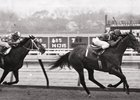 Glorious Song wins the 1980 Top Flight Handicap at Aqueduct