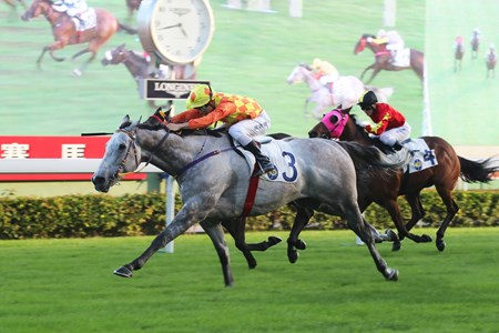 Derek Leung drives Pingwu Spark to victory inthe Class 2 Chevalier Property Development & Operations Handicap (1400m) at Sha Tin Racecourse on November 26 2017