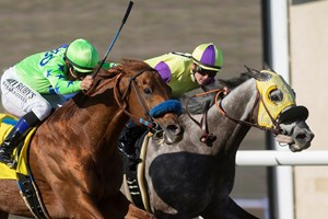 Hunt Holds On To Win Seabiscuit Handicap Bloodhorse