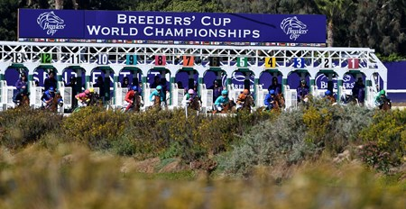 Start of the Breeders' Cup Filly & Mare Turf