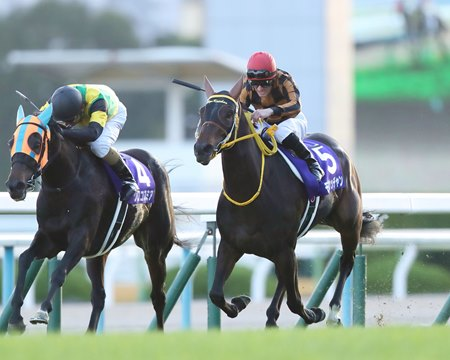 Mozu Katchan (outside) gets by Crocosmia to win the Queen Elizabeth II Cup at Kyoto