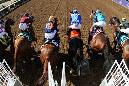 The start of the Breeders' Cup Sprint at Del Mar on November 4, 2017