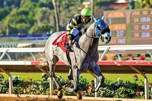 Greyvitos wins the Bob Hope Stakes (G3) at Del Mar Racetrack on November 11, 2017.