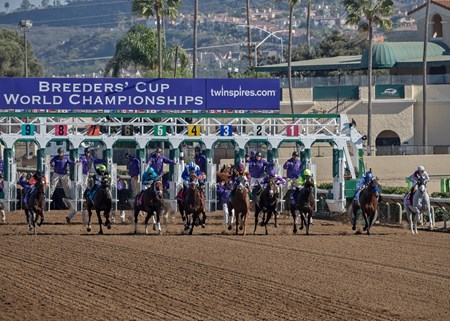 Leaving the gate in the Breeders' Cup Sprint at Del Mar on November 4th 2017