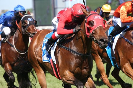 Redzel takes the Darley Classic at Flemington