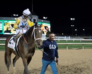 Seeking the Soul heads to the winner's circle after his Clark Handicap victory Nov. 24