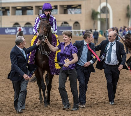 Mendelssohn wins the Breeders Cup Juvenile Turf on November 3, 2017