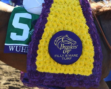 Wuheida wins the Breeders' Cup Filly and Mare Turf on November 4, 2017.