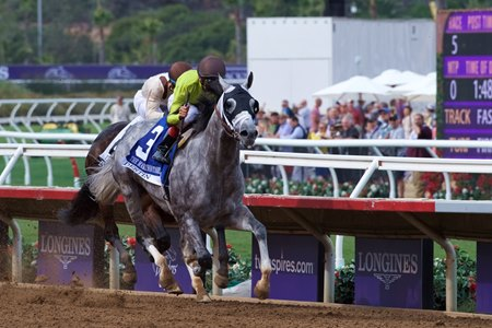 Destin wins the $200,000 Marathon Stakes (G2) Nov. 3 at Del Mar