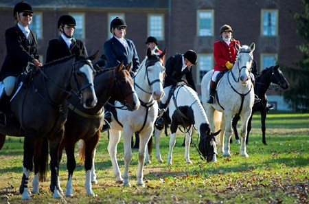 Long Run - Woodford Hunt Blessing at Shaker Village on Nov. 25, 2017. includes off the track Thoroughbreds.