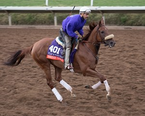 Birdie Gold training for the Breeders' Cup Filly & Mare Turf at Del Mar Nov. 2