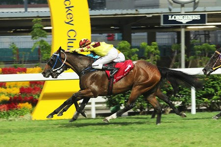 Southern Legend (near side) storms home to take the Class 2 Yip Fat Handicap (1200m) under Nash Rawiller at Happy Valley on October 29 2017