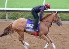 Breeders' Cup Filly & Mare Sprint runner Skye Diamonds gallops at Del Mar