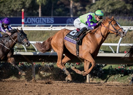 Good Magic wins the Sentient Jet Breeders' Cup Juvenile at Del Mar on November 4th 2017, jockey Jose Ortiz up