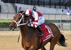 Daisy scores in the Tempted Stakes at Aqueduct Racetrack