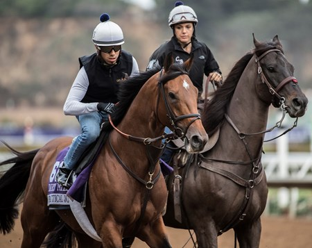 Practical Joke out for morning exercise at Del Mar Nov. 1, 2017.
