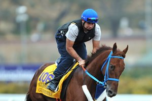 Gunnevera training at Del Mar ahead of his fifth-place finish in the Breeders' Cup Classic