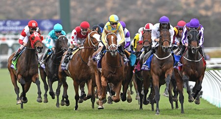 Field for the Breeders' Cup Juvenile Turf enters the clubhouse turn Eventual winner Mendelssohn is on the rail in purple.